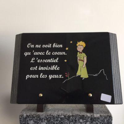 plaque a19